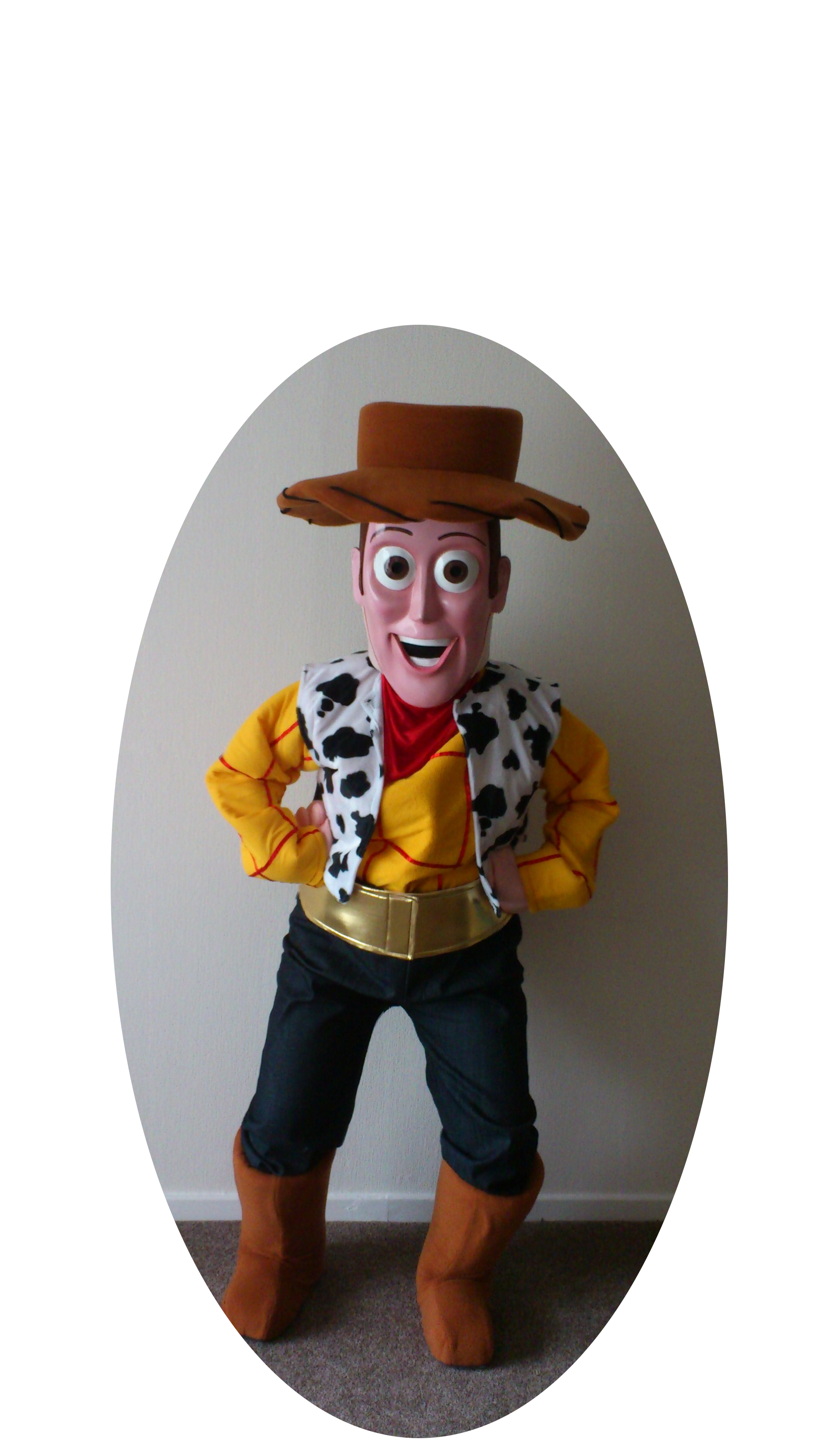 toy story   woody   event mascots costume hire