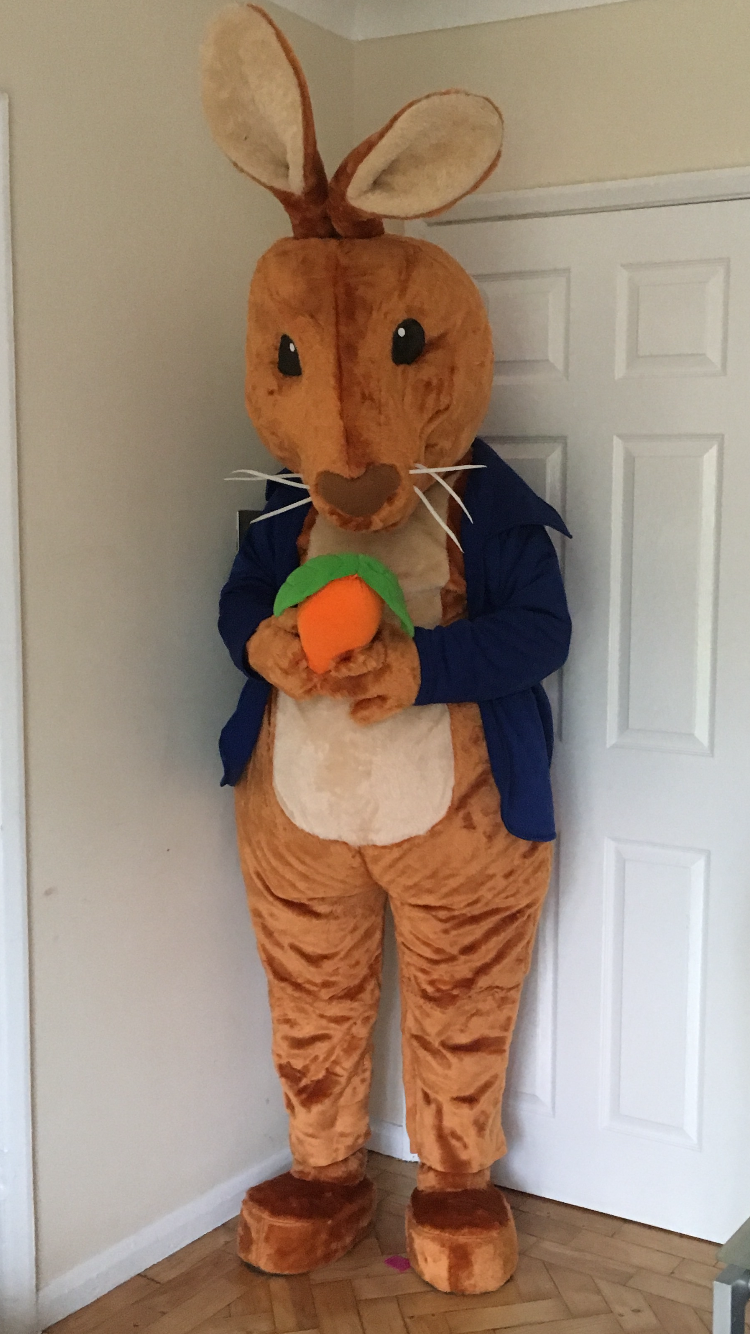 Peter Rabbit & Peter Rabbit - Event Mascots Costume Hire